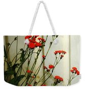 Hawkweed In Late Autumn Sun Weekender Tote Bag