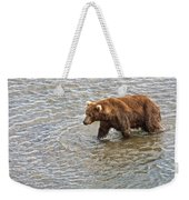 Head Grizzly Bear With Intense Fishing  Focus For Salmon In Moraine River In Katmai Np-ak Weekender Tote Bag