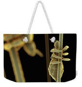 Head Lice Weekender Tote Bag