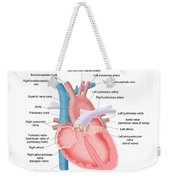Heart Anatomy Weekender Tote Bag