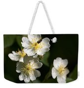 Heaven's Scent Weekender Tote Bag by Christina Rollo