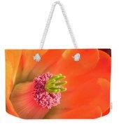 Hedgehog Cactus Flower Weekender Tote Bag