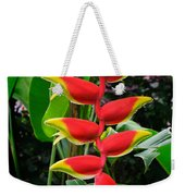 Heliconia Rostrata 2 - A Blooming Heliconia Rostrata Flower Weekender Tote Bag