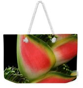 Heliconia Wagneriana - Giant Lobster Claw Heliconiaceae - Maui Hawaii Weekender Tote Bag