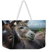 Hello Donkey Weekender Tote Bag