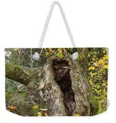 Hello Is There Anybody Out There? Weekender Tote Bag
