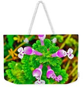 Henbit At Chickasaw Village Site At Mile 262 Of Natchez Trace Parkway-mississippi Weekender Tote Bag