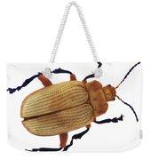 Henry Lin Beetle Weekender Tote Bag