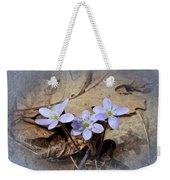 Hepatica Wildflowers - Hepatica Nobilis Weekender Tote Bag