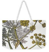 Herbal: Fennel, 1819 Weekender Tote Bag