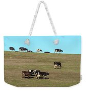 Herd Of Cows Grazing On A Hill, Point Weekender Tote Bag