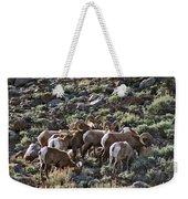 Herd Of Horns Weekender Tote Bag