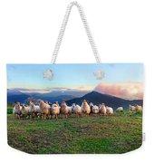 Herd Of Sheep In The Sunset Weekender Tote Bag