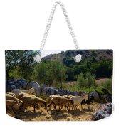 Herd Of Sheep In Tuscany Weekender Tote Bag