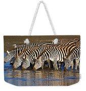 Herd Of Zebras Drinking Water Weekender Tote Bag