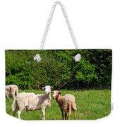 Here Is Looking At Ewe Weekender Tote Bag