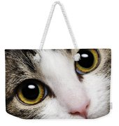 Here Kitty Kitty Close Up Weekender Tote Bag by Andee Design