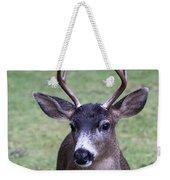 Here Looking At You Weekender Tote Bag