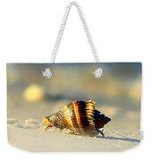 Hermit Crab  Weekender Tote Bag by Debra Forand
