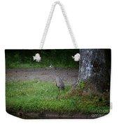 Heron 14-4 Weekender Tote Bag