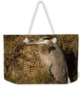 Heron Basking In The Morning Sun Weekender Tote Bag