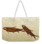 Herring Fish Fossil Weekender Tote Bag