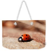 Hey There Little Lady Bug Weekender Tote Bag