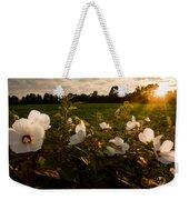Hibiscus At Sunrise  Weekender Tote Bag