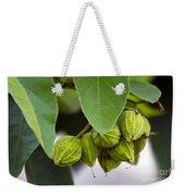 Hidden Fruit Weekender Tote Bag