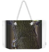 Hide And Seek Squirrels Weekender Tote Bag