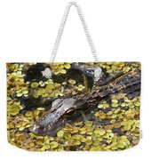 Hiding Alligator Weekender Tote Bag