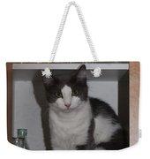 Hiding In The Cabinet Weekender Tote Bag