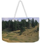 High Angle View Of Bisons Grazing Weekender Tote Bag