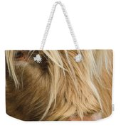 Highland Cow Portrait Weekender Tote Bag