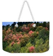 Hill Side Colors Weekender Tote Bag