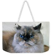 Himalayan Persian Cat Weekender Tote Bag