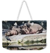 Hippo At Leisure Weekender Tote Bag