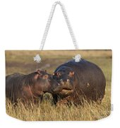Hippo Cow And Calf Weekender Tote Bag