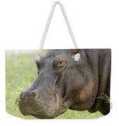 Hippopotamus Okavango Delta Botswana Weekender Tote Bag