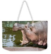 Hippopotamus With Open Mouth Weekender Tote Bag