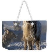Hoarfrosted Elk Calf Weekender Tote Bag