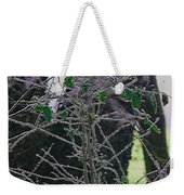 Hoars Frost-featured In Nature Photography Group Weekender Tote Bag