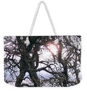 Holding On To The Sun Weekender Tote Bag