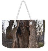 Hollow Tree At Mather Mill Weekender Tote Bag