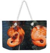 Homosassa Springs Flamingos 14 Weekender Tote Bag