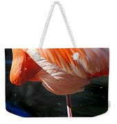 Homosassa Springs Flamingos 7 Weekender Tote Bag