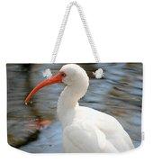 Homosassa Springs Ibis 1 Weekender Tote Bag
