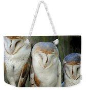 Homosassa Springs Snowy Owls 1 Weekender Tote Bag