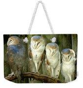 Homosassa Springs Snowy Owls 2 Weekender Tote Bag