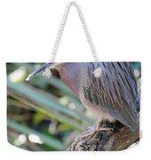 Homosassa Springs Waterfowl 10 Weekender Tote Bag